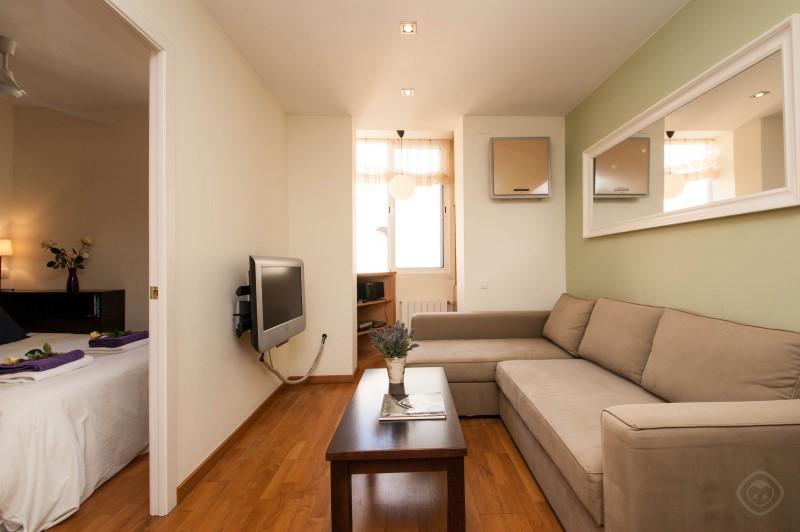 Gracia Garden apartment Barcelona photo 18196433
