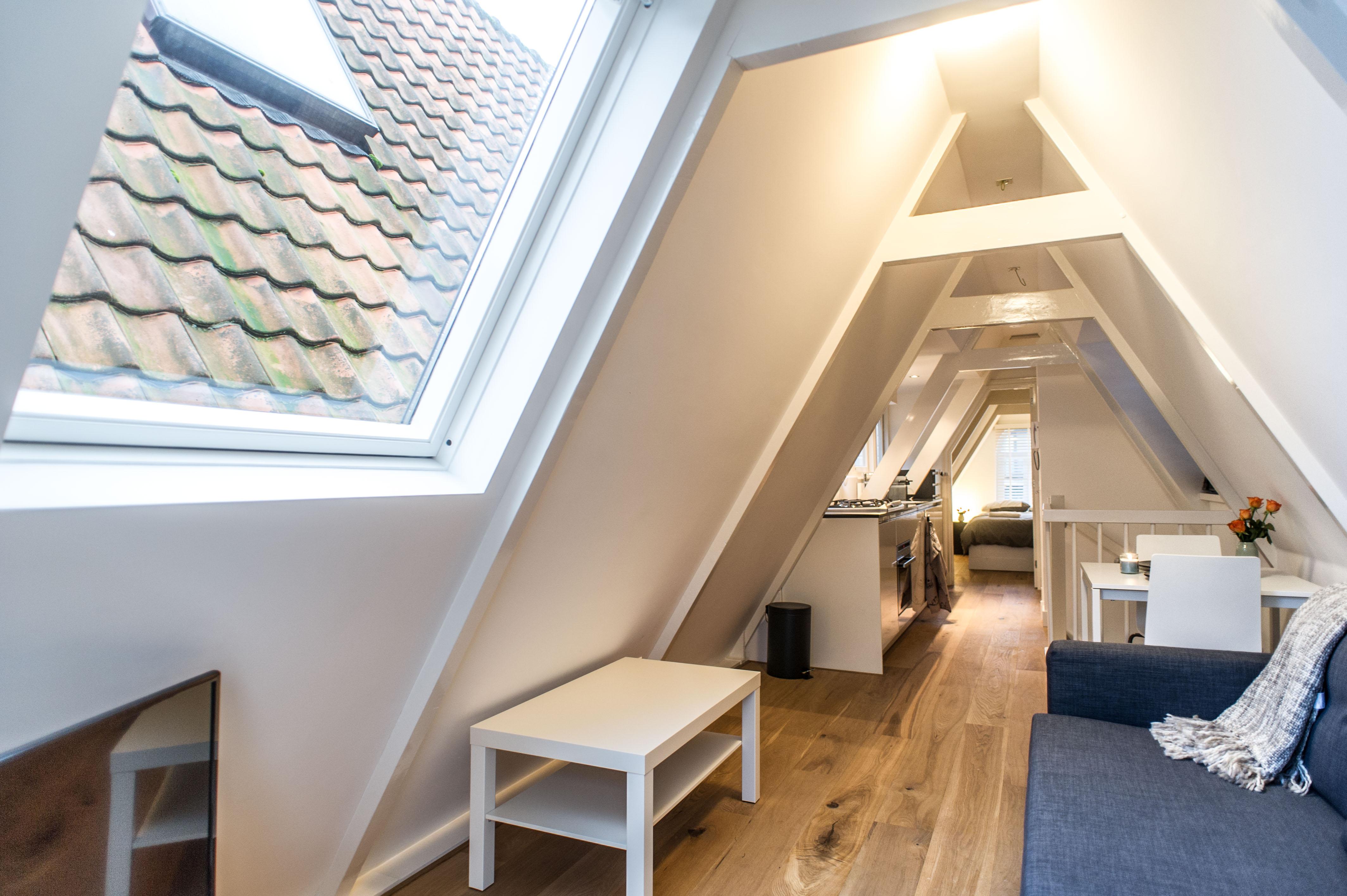 Center Roof apartment Amsterdam photo 981227